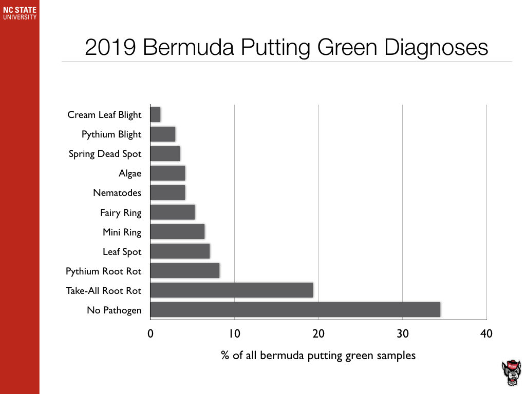 Bermuda Putting Green Diagnosis chart image