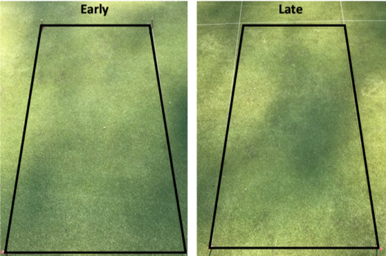 The effect of application timing on take-all root rot suppression