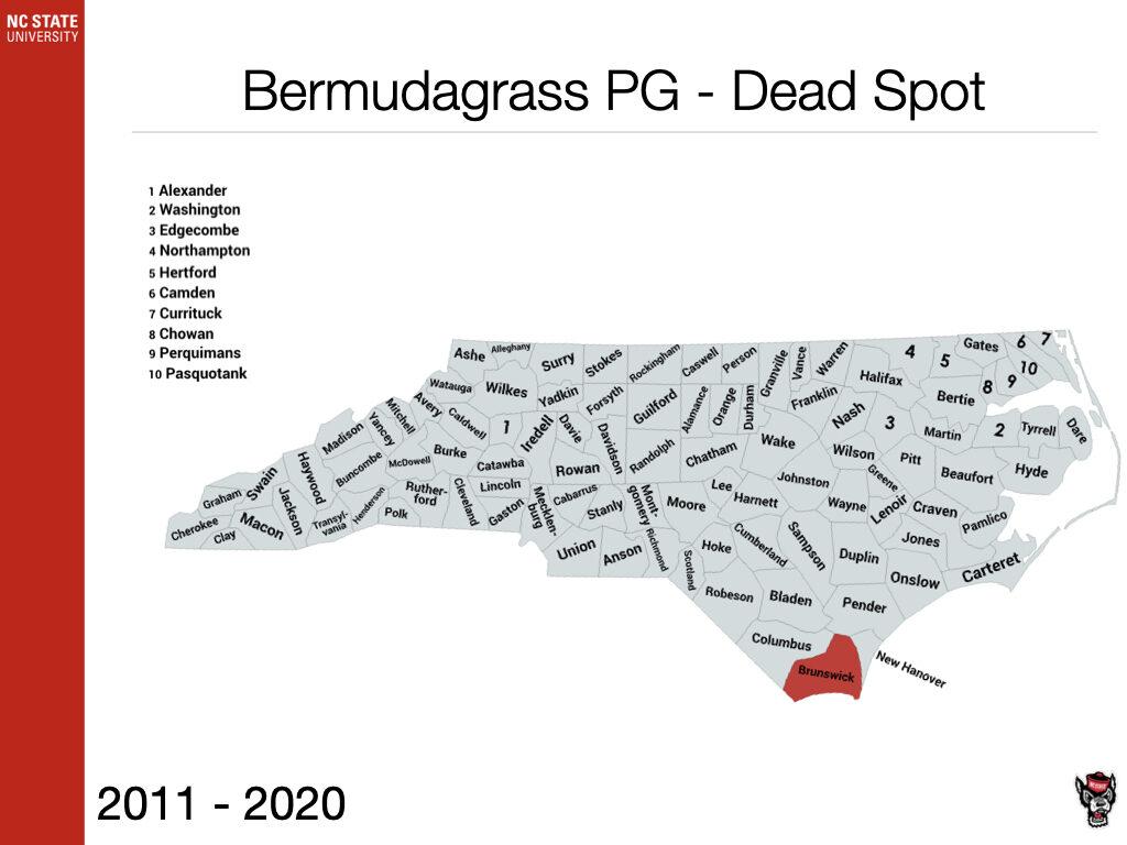 Bermudagrass PG - Dead Spot