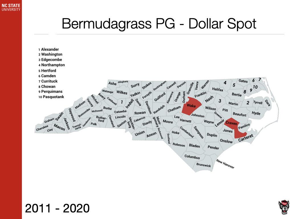 Bermudagrass PG - Dollar Spot