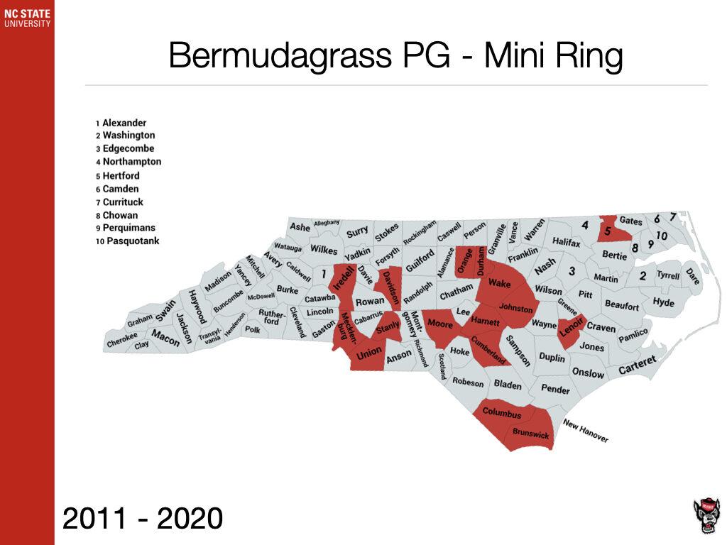 Bermudagrass PG - Mini Ring