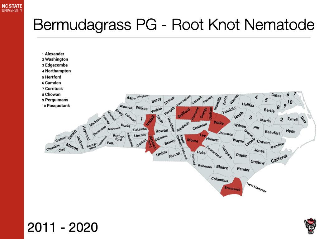 Bermudagrass PG - Root Knot Nematode