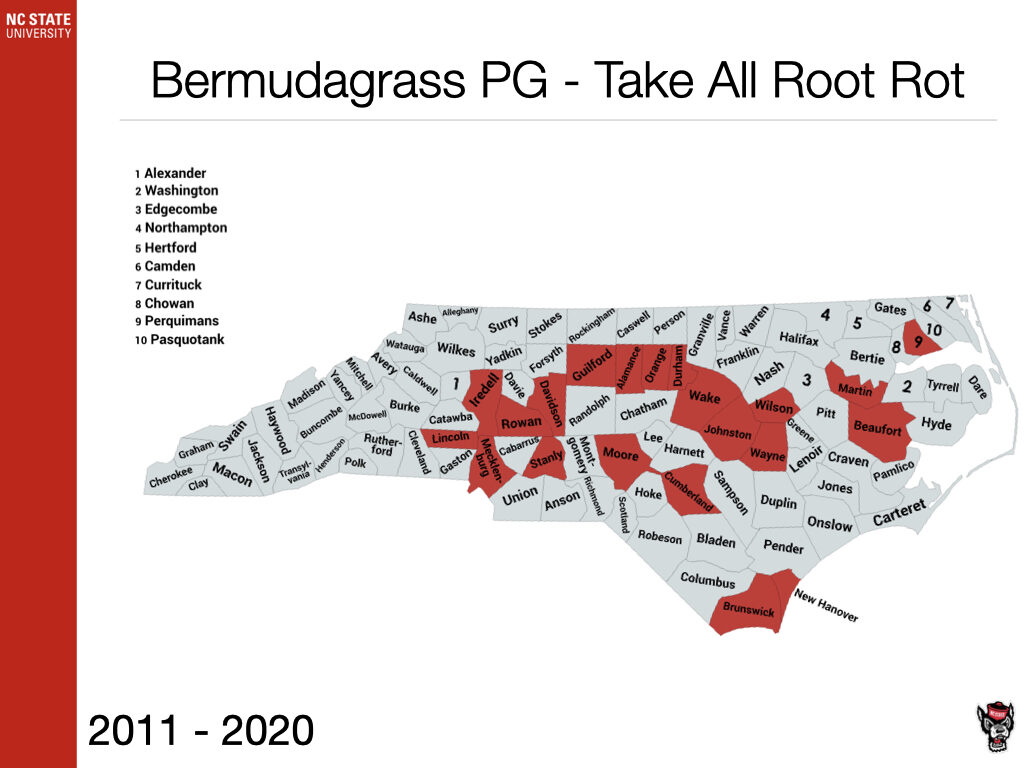 Bermudagrass PG - Take All Root Rot