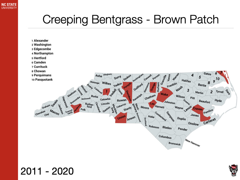 Creeping Bentgrass - Brown Patch