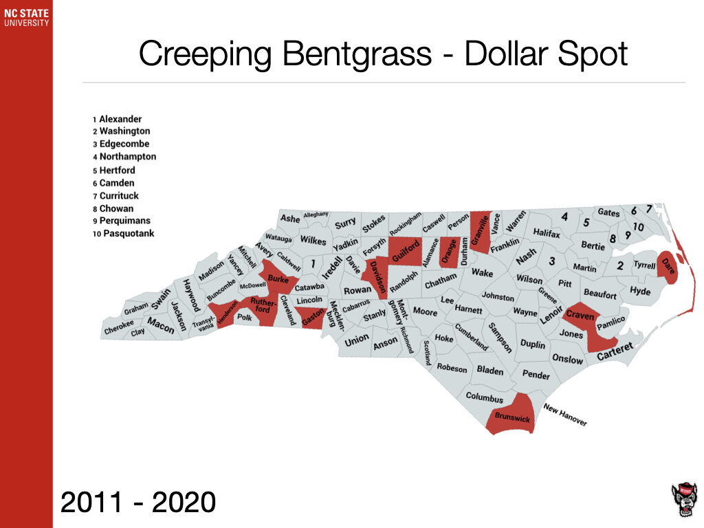 Creeping Bentgrass - Dollar Spot