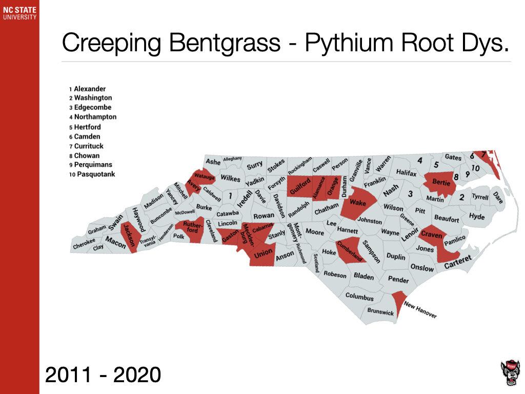 Creeping Bentgrass - Pythium Root Dys