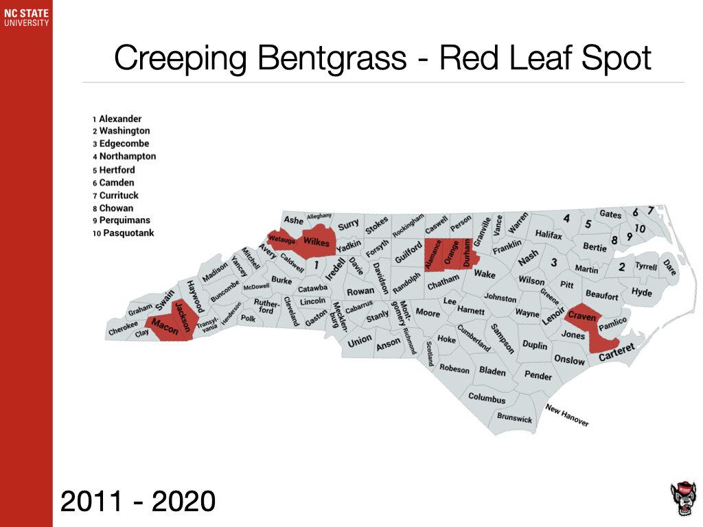 Creeping Bentgrass - Red Leaf Spot