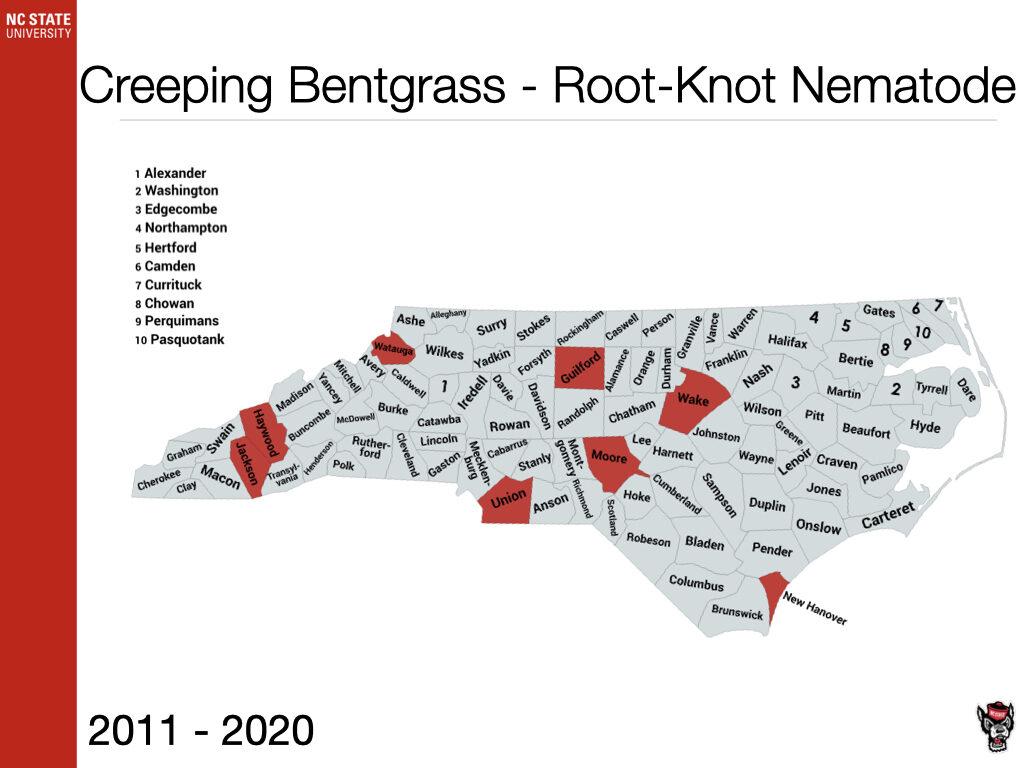 Creeping Bentgrass - Root-Knot Nematode