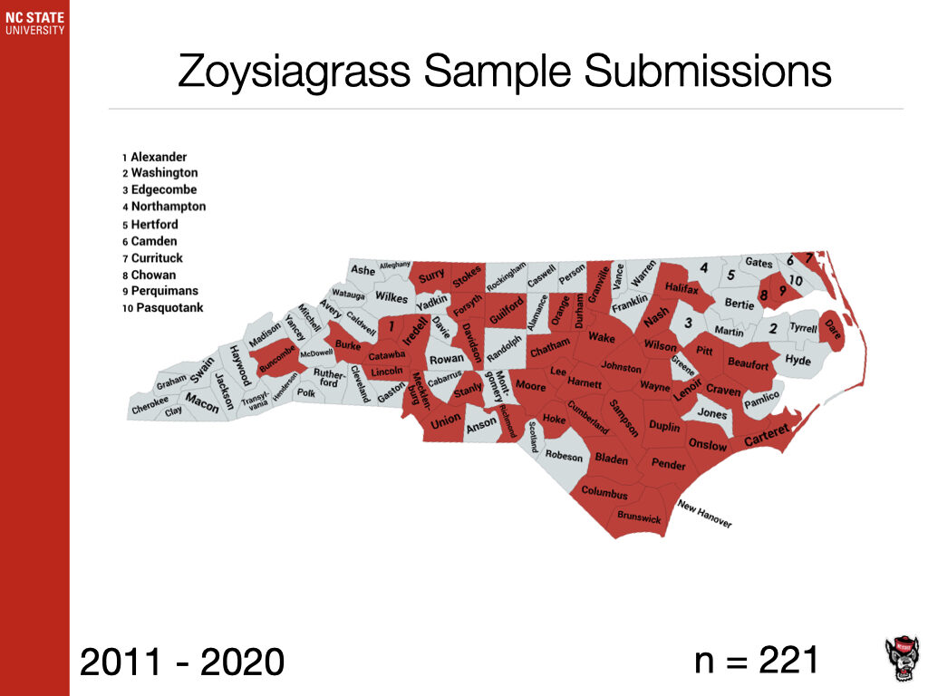 Zoysiagrass Sample