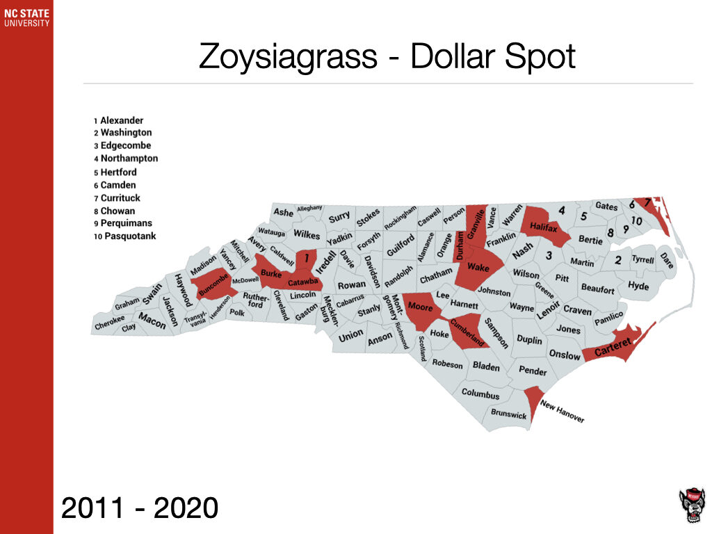Zoysiagrass Dollar Spot Sample
