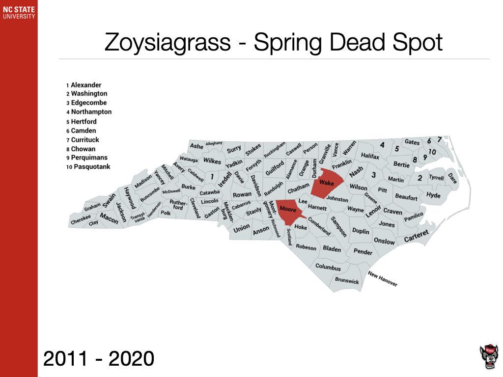 Zoysiagrass Spring Dead Spot Sample