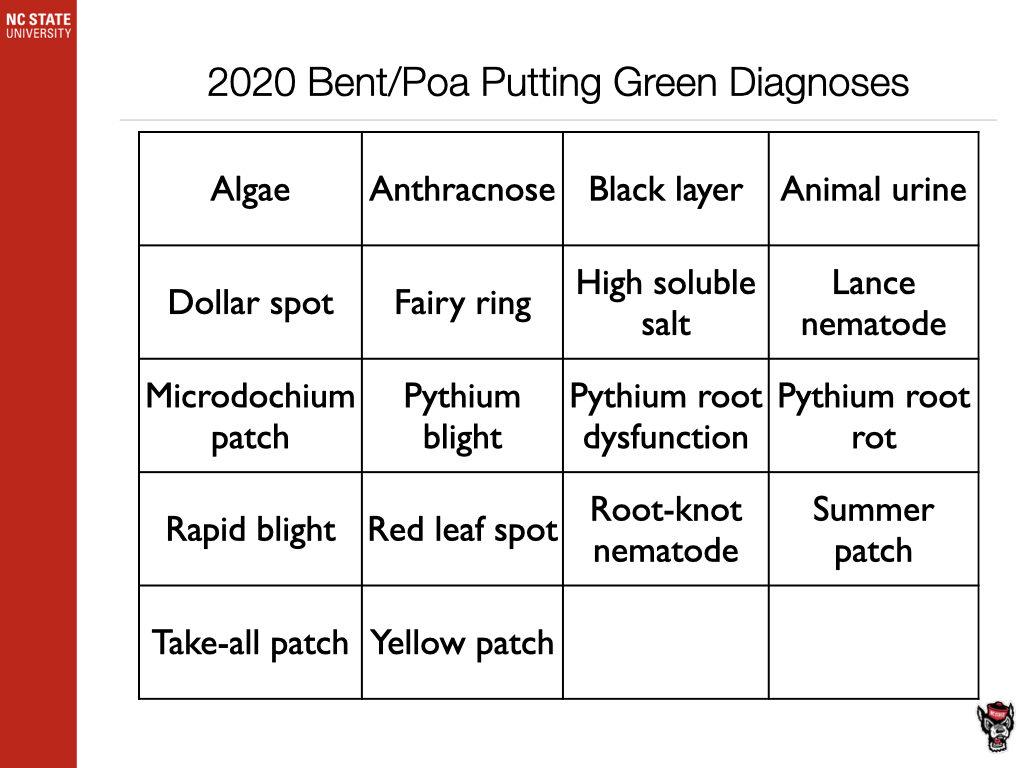 2020 Bent/Poa Diagnosis chart image