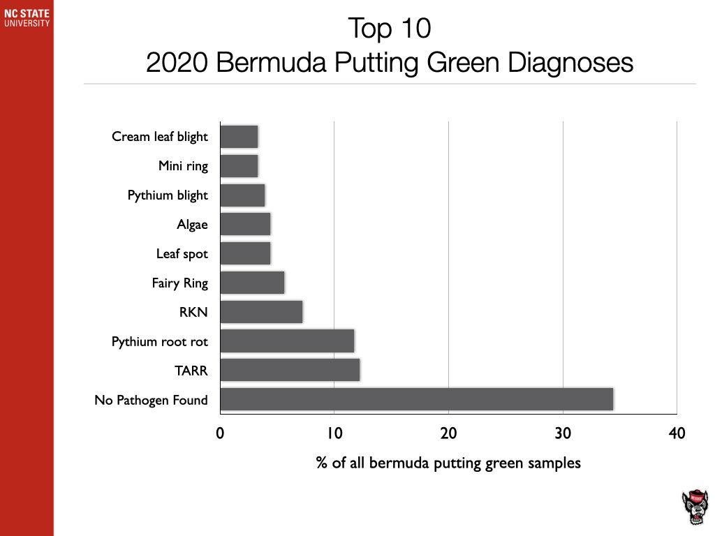 Top 10 Bermudagrass Diagnosis chart image