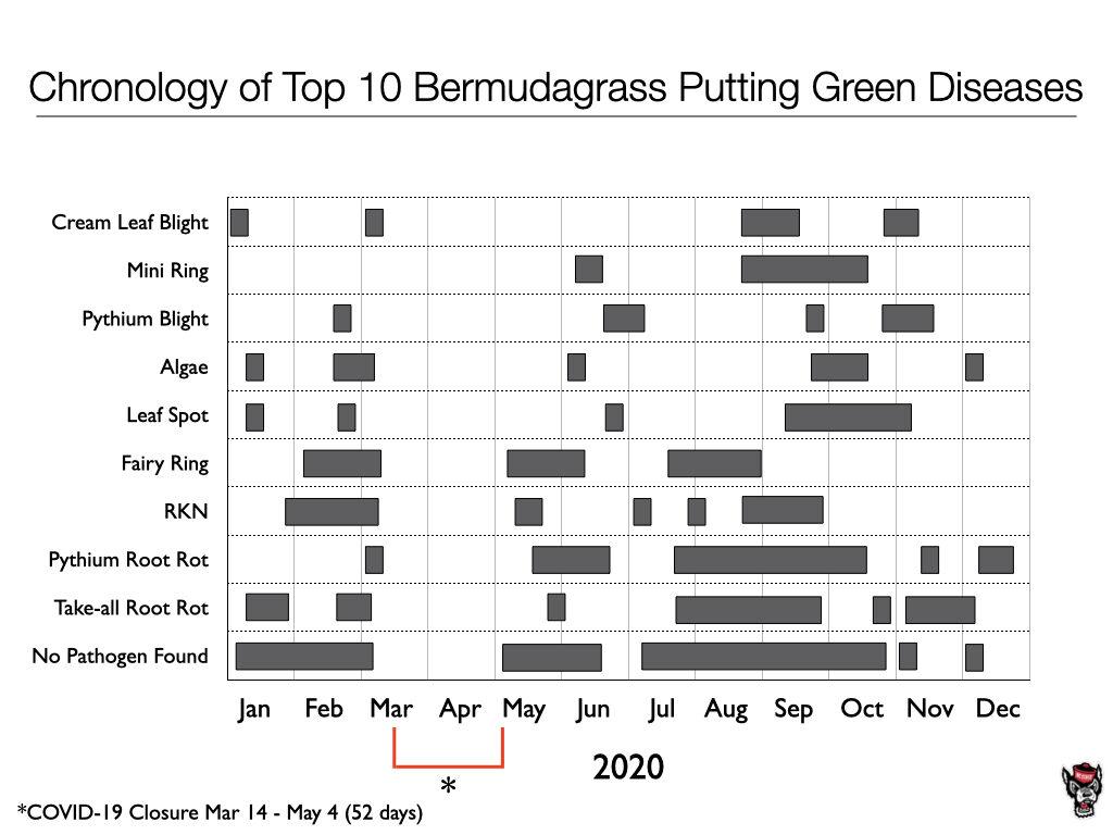 Chronology chart image